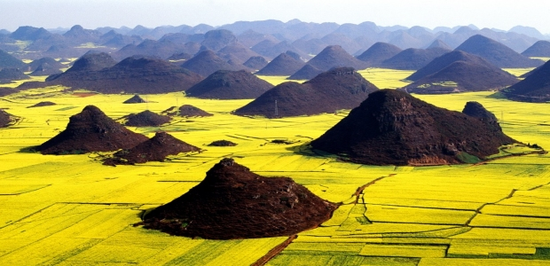 Luoping / Foto: Yunnan Provincial Tourism Administration
