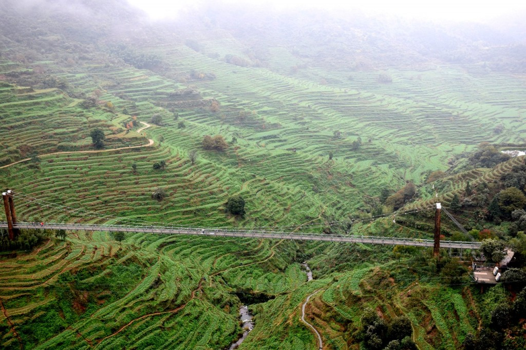 Terrassenfelder beim Dorf Huangling in Wuyuan